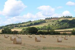 Harvest season. A field of newly harvested hay with a hilly green background Royalty Free Stock Photo