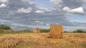 Harvest season Royalty Free Stock Images