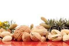 Harvest season, nuts Stock Photos