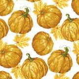 Harvest season pumpkin vector seamless pattern royalty free stock photography