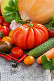 Harvest seasonal fresh vegetables, vertical Stock Photography