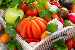 Harvest seasonal vegetables in a wooden box, horizontal Stock Photography