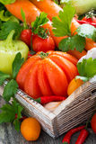 Harvest seasonal vegetables in a wooden box, vertical Royalty Free Stock Photo