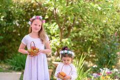 Jewish Holiday Shavuot.Harvest.Two little girls in white dress holds a basket with fresh fruit in a summer garden. stock photography