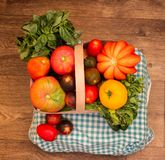 Harvest - square photo. Basket with seven varieties of tomatoes Instagram format Stock Photo