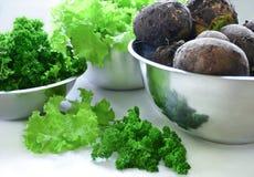 Lettuce, black radish and parsley harvest. Harvest in stainless steel bowls: lettuce leaves, black radishes, parsley Royalty Free Stock Photos