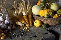 Harvest still-life. Still life with harvest crops on an old table. Still life consists of onions, garlic, corns and a trencher with little pumpkins of various Royalty Free Stock Photography