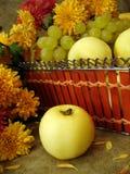 Harvest still-life Stock Images
