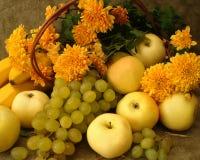 Harvest Still-life Royalty Free Stock Image