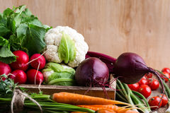 Harvest still life. Food composition of fresh organic vegetables Stock Photos