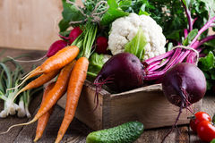 Harvest still life. Food composition of fresh organic vegetables Stock Photo