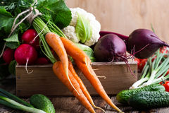 Harvest still life. Food composition of fresh organic vegetables Royalty Free Stock Photo