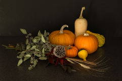 Harvest still life Royalty Free Stock Images