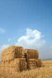 Harvest straw blue sky. Harvest time Square bales of straw in field with blue summer sky Royalty Free Stock Photos