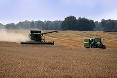 Harvest, summer 2013 Stock Images