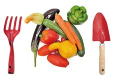 Harvest of summer vegetables Stock Photo