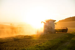 Harvest in the sunset Stock Photos