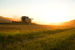 Harvest in the sunset Royalty Free Stock Photography