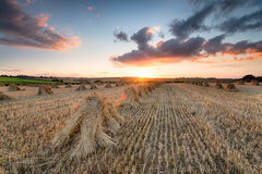Harvest Sunset Royalty Free Stock Photography
