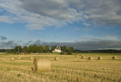 Harvest in Sweden. Harvest autumn landscape in Sweden Royalty Free Stock Photo