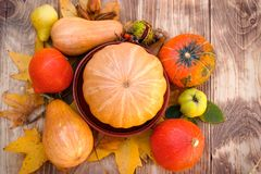 Harvest on table - thanksgiving, seasonal fruit and vegetable. Pumpkin and squash Stock Photo