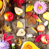 Harvest or Thanksgiving background with autumnal fruits, flowers, leaves, pumpkin, nuts and berries on the rustic wooden table. Au royalty free stock photos