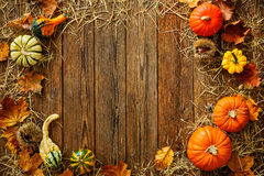 Harvest or Thanksgiving background with gourds and straw Stock Images