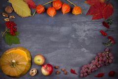 Harvest or Thanksgiving background. Thanksgiving Day food concept. Autumn fruits, vegetables, leaves and flowers. View from above, top, frame, copy space Royalty Free Stock Image