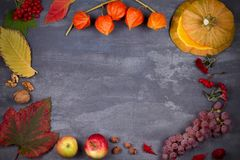 Harvest or Thanksgiving background. Thanksgiving Day food concept. Autumn fruits, vegetables, leaves and flowers. View from above, top, frame, copy space Stock Photography
