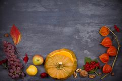 Harvest or Thanksgiving background. Thanksgiving Day food concept. Autumn fruits, vegetables, leaves and flowers. View from above, top, frame, copy space Royalty Free Stock Photography