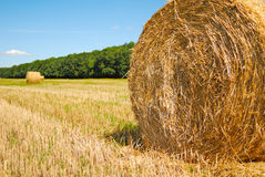Harvest time. Hay roll at the field under cloudy sky Royalty Free Stock Photo