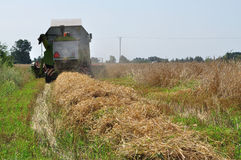 Harvest time. Combine harvester at work on the farmland, at the harvest time Royalty Free Stock Photography