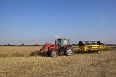 Harvest time Royalty Free Stock Image
