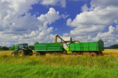 Harvest time Royalty Free Stock Images