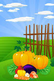 Harvest time. Thanksgiving Day. Conceptual harvest graphic with various vegetables on the field Royalty Free Stock Image