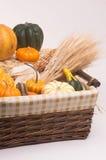 Harvest Time stock photo