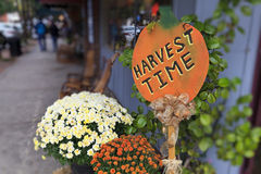 Free Harvest Time Stock Image - 36964251