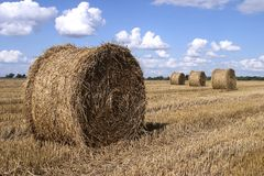 Harvest Time. Bales of hay Stock Photo