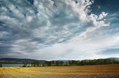 Harvest time. Is commnig after summer Royalty Free Stock Photo