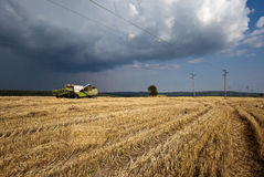 Harvest time. Agricultural machine harvest the field Royalty Free Stock Photography