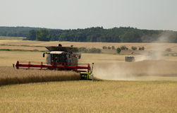Harvest time Stock Images