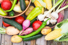 Harvest time. A basket of vegetables on a wooden table. Assorted colorful vegetables and herbs on the old wooden background , harvest time Royalty Free Stock Photography
