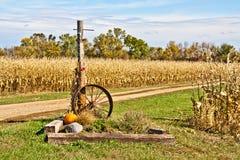 Free Harvest Time Cornfield Stock Photos - 34480693