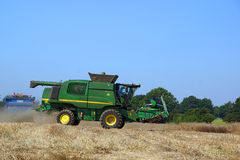 Harvest time Stock Image
