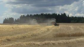 Harvest time stock video