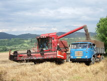 Harvest time. Harvester on the wheat field doing its job Stock Images