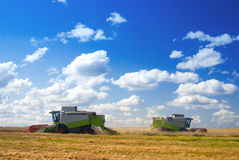 Harvest time. Harvesters working in the field Stock Photo