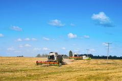 Harvest time. Harvesters working in a field Stock Image