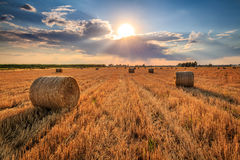 Harvest time. Hay rolls during sunset. Dramatic sky, harvest time Stock Photography