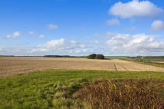 Harvest time landscape Stock Photography